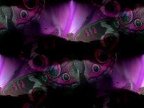 Schmetterling von Cornelia Greinke