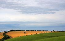 Sommerlandschaft von Wolfgang Dufner