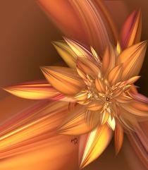 Pumpkin Spice by Karla White