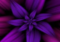 Purple Pleasures von Karla White