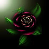 La-rosa