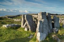Inishmore, Ireland, 3533 by Stas Kalianov