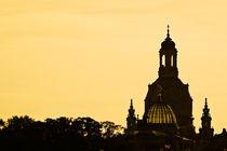 Dresden by ringo