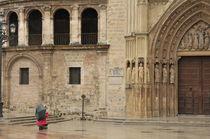 World souvenir: Valencia, Cathedral von Manel Clemente