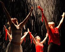 dance ballet von Sylwia Olszewska