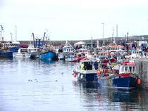 The Harbour Kilmore Quay by Debra  Collins