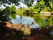 The River Suir Clonmel by Debra  Collins