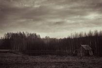 Colorless by Lina Gavenaite