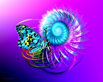 Schmetterlingszauber by Gabriele Nedilka