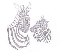 Zebra-mom-and-baby