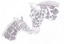 Giraffe Mother and Child  von Caitlin Wells