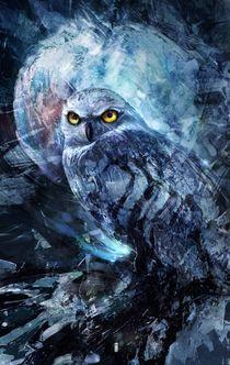 Nightowl von Ivan Tao