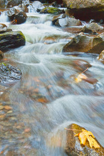 Downstream of Elowah Falls von Jon Mack