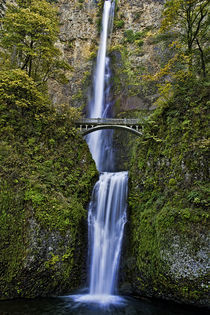 Multnomah Falls Portrait by Jon Mack