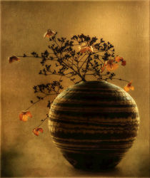 Herbststilldave-copy