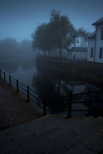 Foggy morning by Fredrik Sjöberg