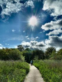 Going Walking. by Debra  Collins