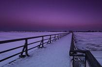 Winterstimmung  von Cornelia Dettmer