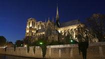 Notre Dame by Milena Zindovic
