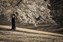 Herbstbaumgoldsepia-2