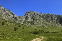 Trascau Mountains by Radu Razvan