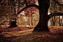 Herbstpoesie von Jürgen Klust