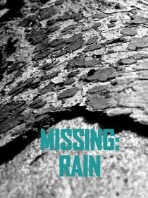 Missing: Rain by Ljubica Andelkovic