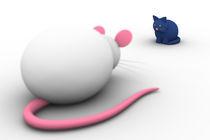 Katze und Maus mit Schärfentiefe by dresdner