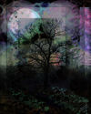 Twilight-jpg-signed-large