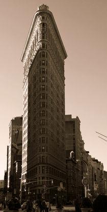 Flatiron Building von Ines Schäfer