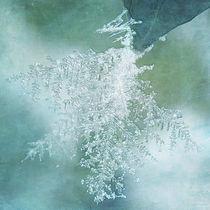 ...wenn ich eine Schneeflocke wär... von Franziska Rullert