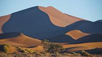 Namib 4 von Hartmut Fittkau