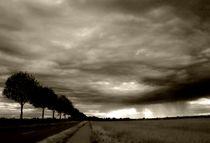 Sturmwolken von Torsten Reuschling