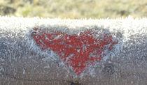 Winter love by Gayle Lashinco