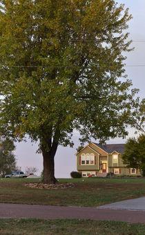 Rural Morning von Joel Gafford