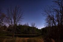 The Bright Night by Joel Gafford