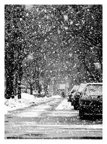 Snow Day by Iskrenna Panayotova