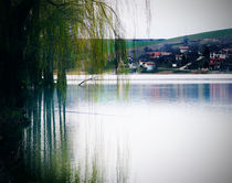 Countryside by Iskrenna Panayotova