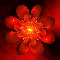 Blume der Liebe von Christine Kühnel