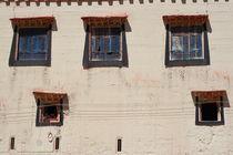 Child in windows (Shangeri-La, YunNan, China) by ShuiZhou He