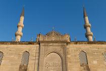 Eminonu New Mosque von Evren Kalinbacak