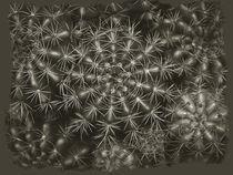 Fractal Vegetal 1 by Juan Carlos Lopez