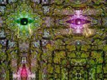 The eyes of the forest von Janos Fazekas