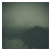 Foggy World by Perry Dolmans