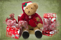 Teddy at Christmas by Louise Heusinkveld