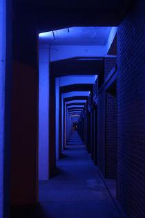 Into the blue von Johanna Fülscher