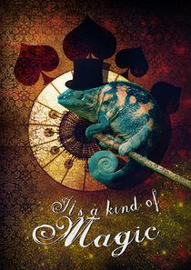 It's a kind of Magic by Andrea Lantos