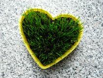 Grass heart von maudke
