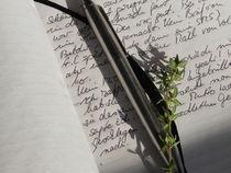 Tagebuch von Kathrin Kiss-Elder