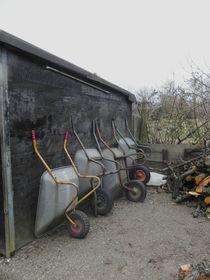 Schubkarren im Kleingartenverein von Kathrin Kiss-Elder